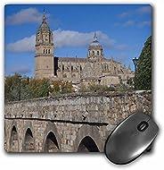Alfombrilla para mouse con acabado mate en 3D, 8 x 8 pulgadas, Catedrales de Salamanca, España, Puente romano,