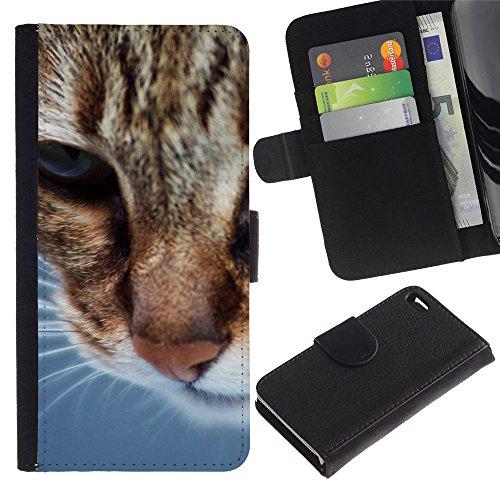 Billetera de Cuero Caso Titular de la tarjeta Carcasa Funda para Apple Iphone 4 / 4S / American Shorthair Whiskers Orange Cat / STRONG