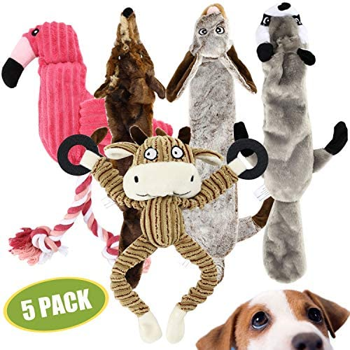 Buddy Wild Plush Dog Toys – Squeaky, cuddly soft chew bundle – 5 pack set – durable, interactive toys for puppy and small dogs – variety with 3 no stuffing animals