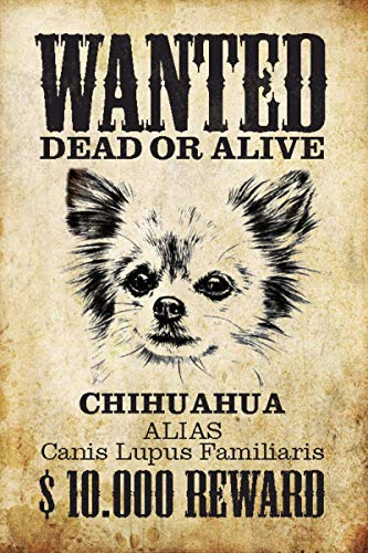 Ohuu Wanted Dog Chihuahua Tin Wall Signs Warning Sign Metal Plaque Poster Iron Painting Art Decoration for Bar Café Hotel Office Bedroom Garden ()