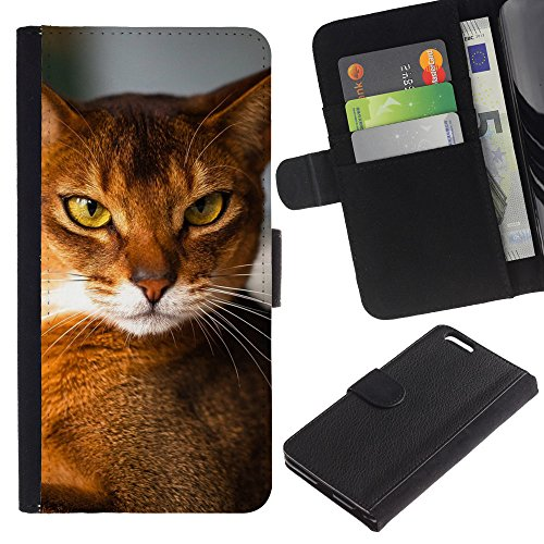 EuroCase - Apple Iphone 6 PLUS 5.5 - Abyssinian chausie orange cat breed - Cuir PU Coverture Shell Armure Coque Coq Cas Etui Housse Case Cover