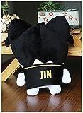Kpop Doll Plush Toys SUGA Jimin V JIN J-Hope Home