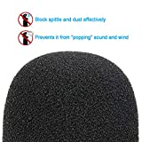 AT2020 Pop Filter Foam Cover - Large Mic Windscreen for Audio Technica AT2020 AT2020USB+ AT2035 Condenser Microphone to Blocks Out Plosives