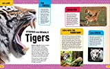 Discovery: Insider's Encyclopedia: Animals