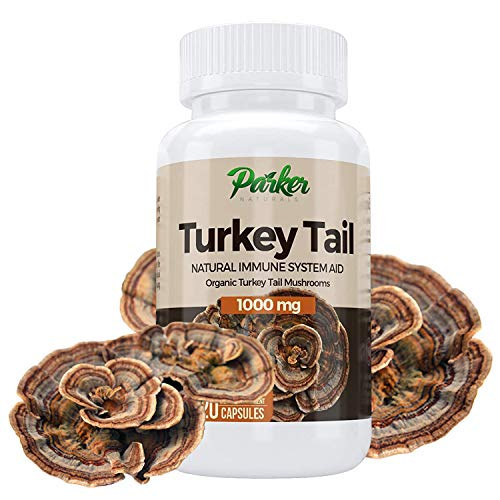 Premium Organic Turkey Tail Mushroom Capsules by Parker Naturals Supports Immune System Health. Nature's Original Superfood. 120 Capsules …