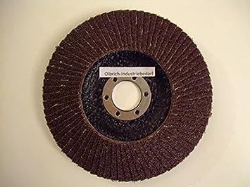 Olbrich-Industriebedarf Lot de 10 disques /à lamelles en acier inoxydable 125/mm