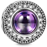 """NINAQUEEN """"Wishing Charms 925 Sterling Silver Purple Charms Beads, Ideal Christmas Jewelry Gifts for Her"""