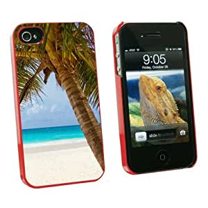 Graphics and More Tropical Palm Tree Ocean Beach - Snap On Hard Protective Case for Apple iPhone 5c - Red - Carrying Case - Non-Retail Packaging - Red