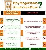 MegaPlants Simply Sea Moss | 16 Oz | All Natural