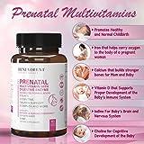 Prenatal Vitamins with DHA and Folate