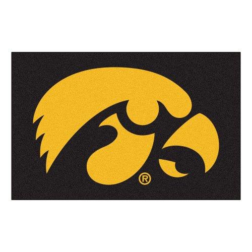 Fanmats NCAA University of Iowa Hawkeyes Nylon Face Starter Rug - Ncaa Iowa University