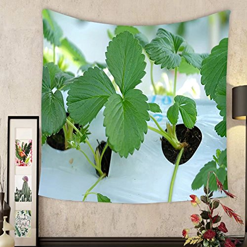 Evelyn C. Connor Custom?tapestry close up green leaf of strawberry at farm in japan that are growing in greenhouses ()
