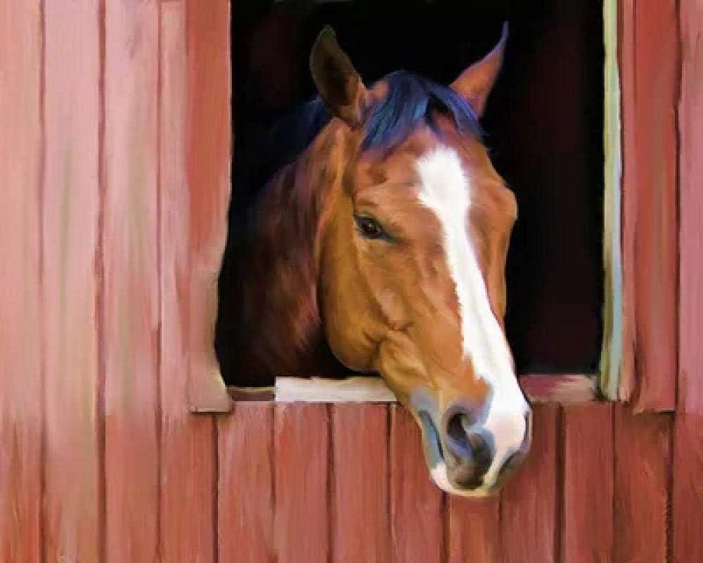 Kit de pintura de diamante 5D DIY painting Cabeza de caballo asomando por la ventana Crystal Rhinestone de punto de cruz bordado artes manualidades suministros para decoración de la pared del h
