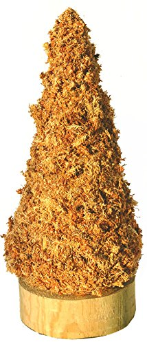 Christmas-Tree-Cone-Sphagnum-Moss-Topiary-Form-Large