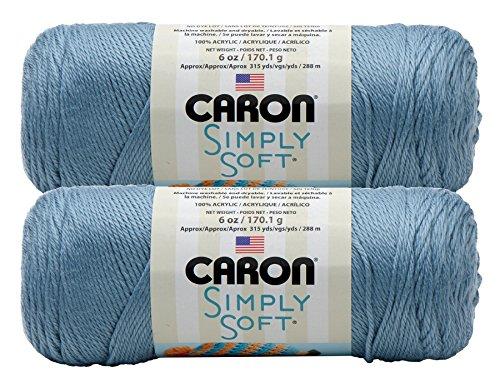Bulk Buy: Caron Simply Soft Yarn Solids (2-pack) (Light Country Blue)