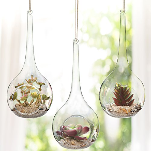 Set of 3 Hanging Teardrop Design Clear Glass Globes / Artificial Succulent Plant Display - Glasses Artificial