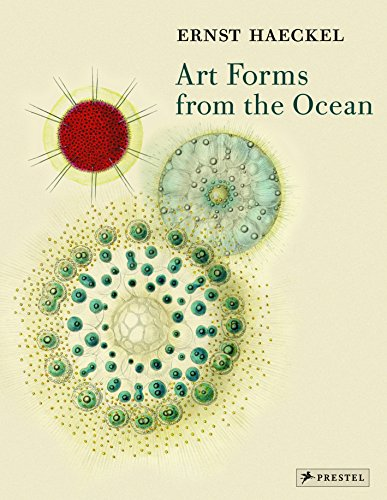 Art Forms from the Ocean: The Radiolarian Prints of Ernst Haeckel by Olaf Breidbach
