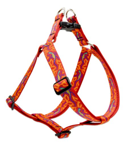 """LupinePet Originals 1"""" Go Go Gecko 19-28"""" Step In Harness for Medium Dogs"""