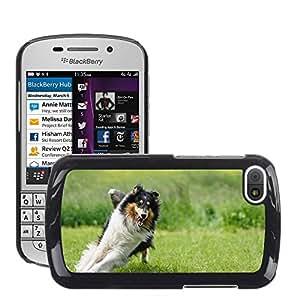 Super Stella Slim PC Hard Case Cover Skin Armor Shell Protection // M00148405 Dog Collie Fur Animal Pet // BlackBerry Q10