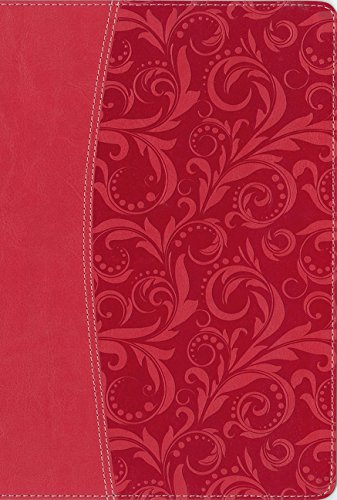 le, Leathersoft, Pink, Indexed: The Question and Answer Bible ()