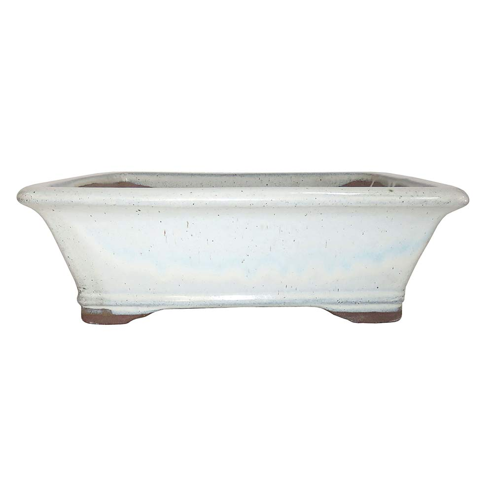 Brussel's Bonsai CGG93-8NCM Brussel's 8'' Rectangle Bonsai Glazed Ceramic Pot (Medium, New Cream)