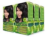 Naturtint Permanent Hair Color - 1N Ebony Black, 5.28 fl oz (6-pack)