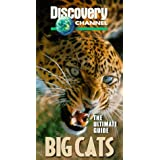 Ultimate Guide: Big Cats
