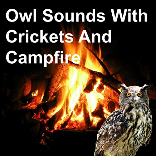 Best crickets and campfire sounds list