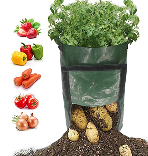 (kelvee Grow Garden Bag 10 Gallon Garden Planter Bags Large Grow Bags Plant Tub with Handles & Flap for Vegetables Sweet Potato Tomatoes Strawberry Carrot Onion 2 Pack.)