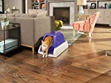 PetSafe ScoopFree Self-Cleaning Cat Litter Box