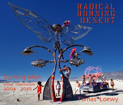 Radical Burning Desert - Seven Years of Burning Man Photography 2004-2010