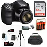 Sony Cyber-shot DSC-H300/B Compact Zoom Digital Camera in Black + SanDisk Ultra 32GB 80MB/s SD Card + Carrying Case + 4 AA Rechargeable Batteries w/ Charger + Accessory Kit