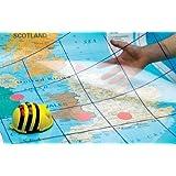 Bee Bot Transparent Grid Mat Ideal for schools