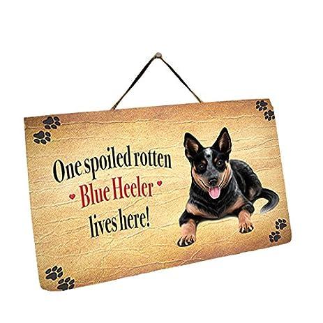 Amazon.com: Blue Heeler Dog Wall Décor Hanging Spoiled Rotten Dog ...
