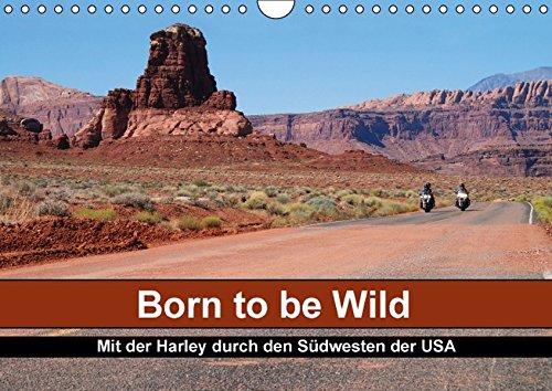 Born to be Wild - Mit der Harley durch den Südwesten der USA (Wandkalender 2016 DIN A4 quer): Die landschaftlichen Highlights des amerikanischen ... ... (Calvendo Mobilität) (CALVENDO Mobilitaet)