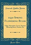 Amazon / Forgotten Books: Spring Flowering Bulbs Tulips, Hyacinths, Crocus, Summer Blooming Roses, Peonies, Etc Classic Reprint (Peacock Dahlia Farms)
