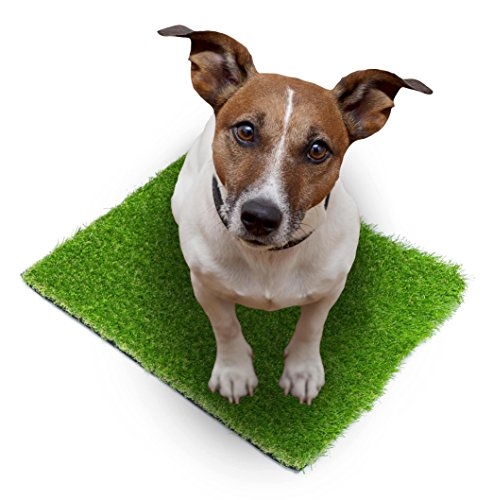 SavvyGrow Artificial Grass for Dogs Pee Pads - Premium 4 Tone Puppy Potty Training, Easy to Clean with Drain Holes - Fake Astro Turf Dog Mat Pad  Non Toxic for Pet (Many Sizes)(2.3 ft x 3.3 ft)
