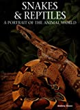 Snakes and Reptiles, Andrew Cleave, 1597640980