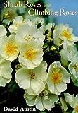 Shrub Roses and Climbing Roses