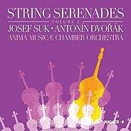 Serenade in E Major, Op. 22, B. 52: II. Menuetto. Allegro con moto