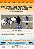 Horse Training: