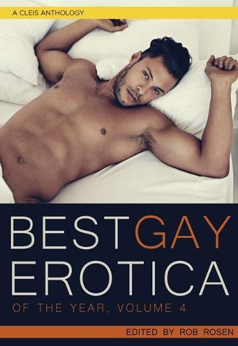 Best Gay Erotica of the Year, Volume 4 (Best Gay Erotica Series) by Cleis Press