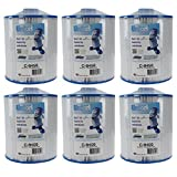 Unicel C-8450 Spa Replacement Cartridge Filter 50 Ft Coleman/Maax Spas (6-Pack)