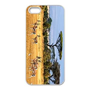 Gazella Hight Quality Plastic Case for Iphone 5s