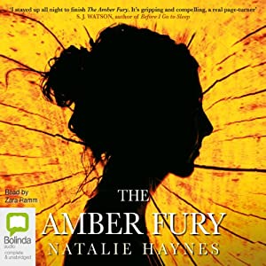 The Amber Fury Audiobook