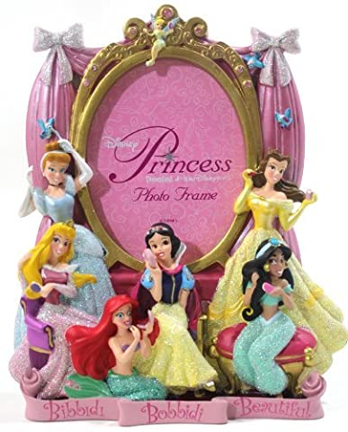 Disney Parks Princess