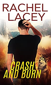 Crash and Burn (Stranded Book 1) by [Lacey, Rachel]