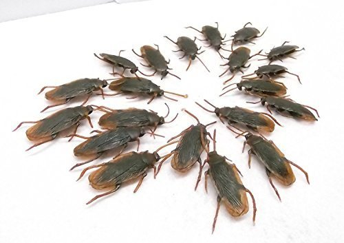 Toward German cockroach is required to pest hell jokes goods mass of 20 animals set Bireji Hild fake cockroach, sideshow joint party and welcome party, Halloween, party, and other events! Surprised, shockingly radical, imitation, toy, gluttony, Madagascar Day, Mother's Day, gift, interesting goods (japan import) by Small moxa seminal article