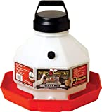 LITTLE GIANT Miller Manufacturing Plastic Poultry Fountain - 3 gal.