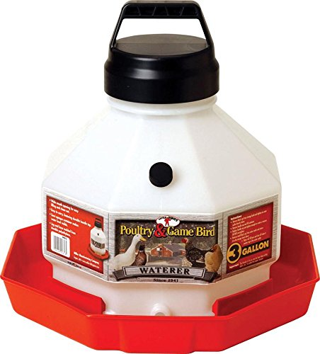 LITTLE GIANT Miller Manufacturing Plastic Poultry Fountain - 3 gal. by LITTLE GIANT